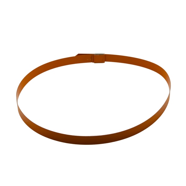 Colored Capillary Band with Buckle